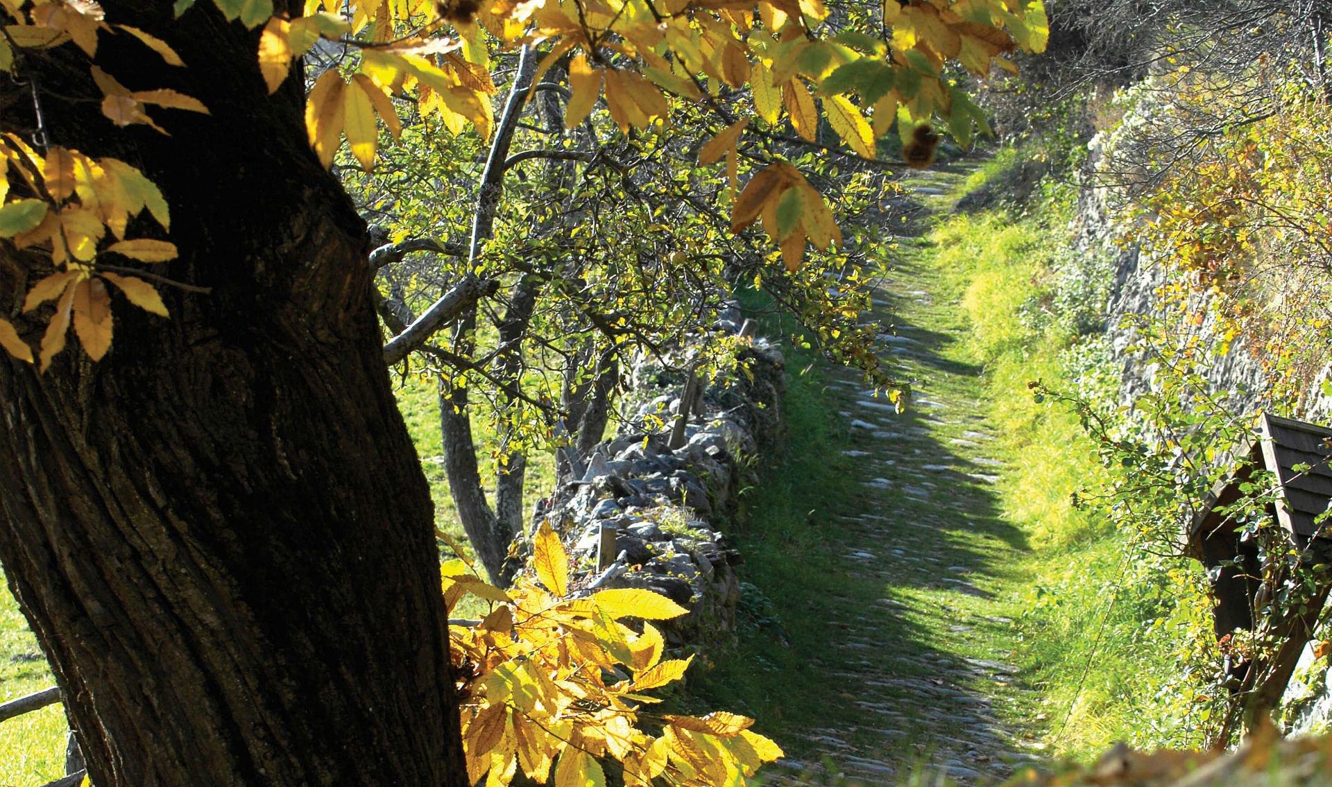 Velturno d'autunno
